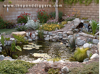 Indoor pond and waterfall construction and design water for Making a pond in your backyard