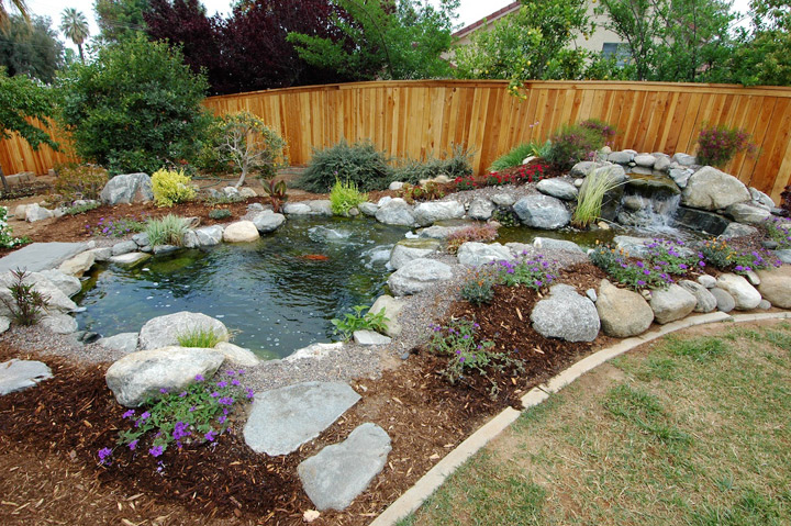 Professional construction the pond digger for Backyard fish pond designs