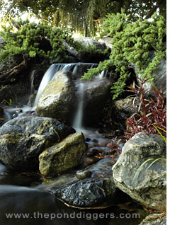 Backyard Waterfall Triplett