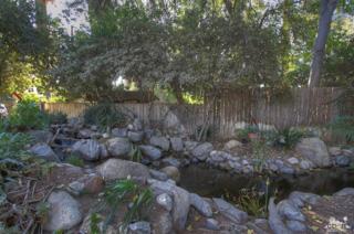 pond-side