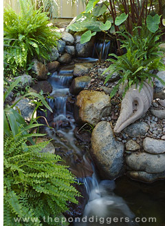 The Sound Of A Water Garden Is Compelling
