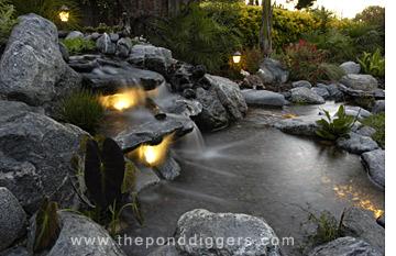 Moonlight pond tour the pond digger for Virtual koi fish pond