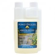 Liquid Pond Bacteria