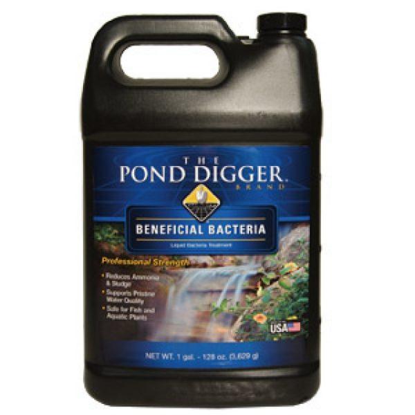 Liquid Pond Bacteria3
