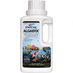 Pond Care Algaefix 32 oz