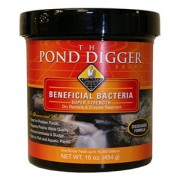 Super Strength Pond Bacteria 160z