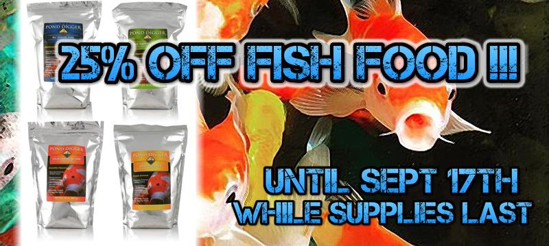 fish-food-sale